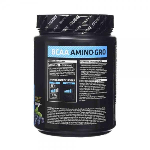 BCAA Amino-Gro, USN, 300g